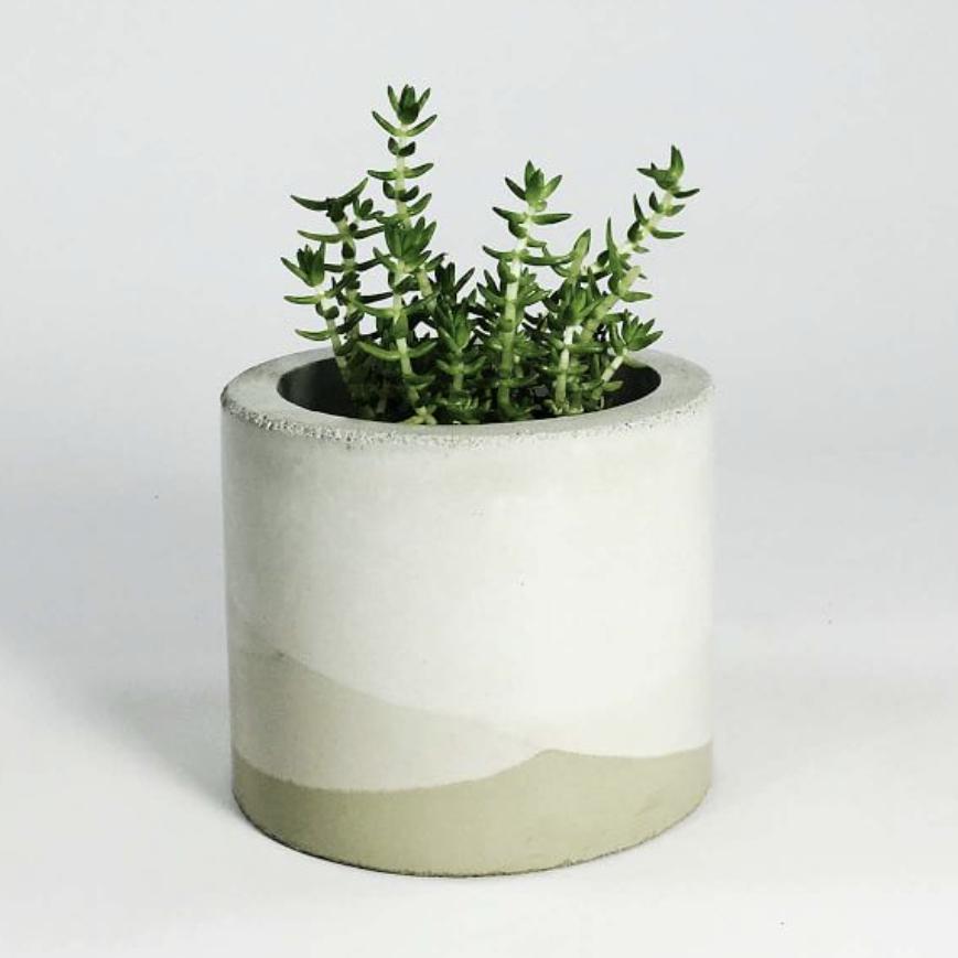Concrete Vase via West Elm
