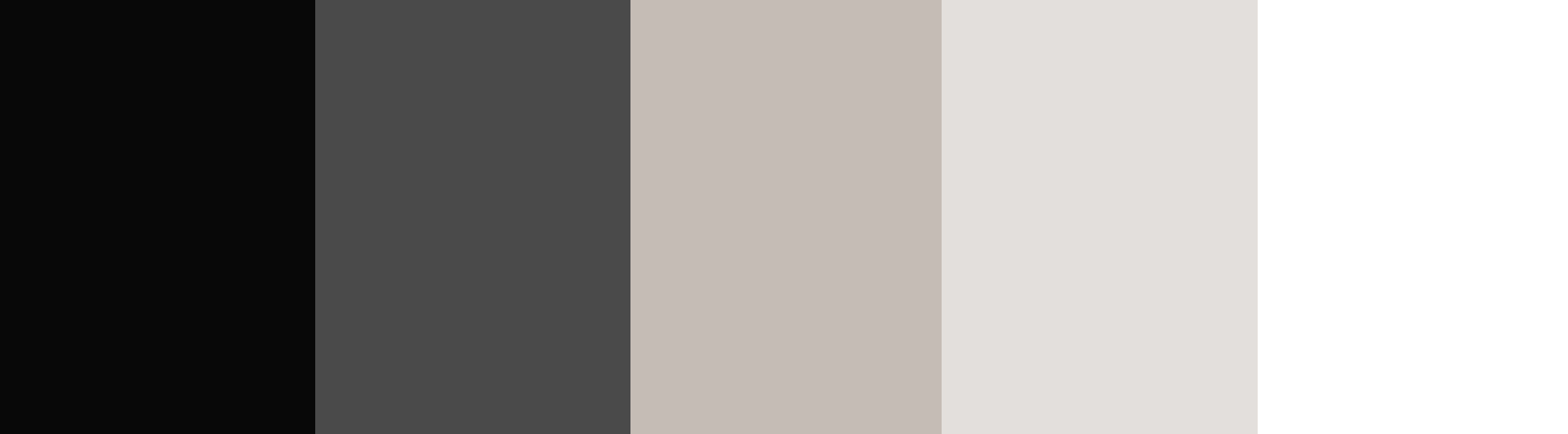 White/Beige/Light Gray + Charcoal Gray color palette